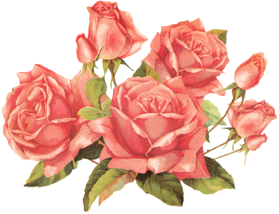 cropped-cropped-548571480_2387815_rose_pink_by_jinifur-d37hnap-copy2.png